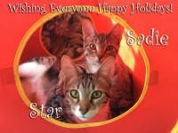 Wishing everyone Happy Holidays
